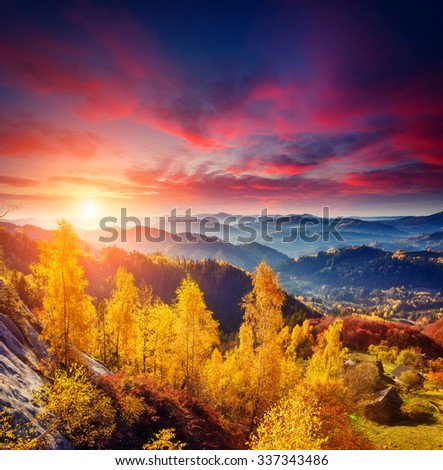 Majestic trees with sunny beams at mountain valley. Dramatic and picturesque morning scene. Red and yellow leaves. Warm toning effect. Carpathians, Sokilsky ridge. Ukraine, Europe. Beauty world. #337343486