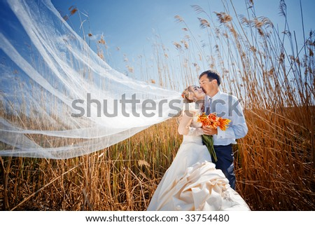 Kissing wedding couple in high grass #33754480