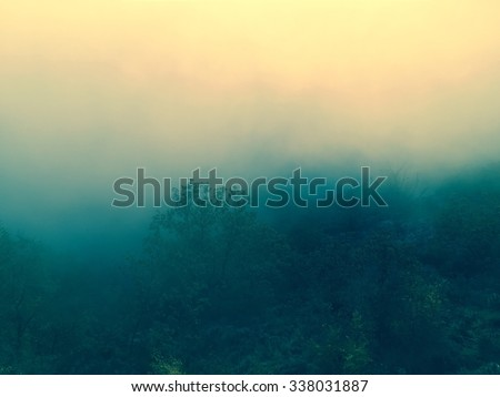 Foggy Forest Background with autumn filtered colors Ideal as a background for quotes or inspirational typographic tex.