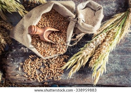 Healthy ingredients for rolls and bread with whole grains Royalty-Free Stock Photo #338959883