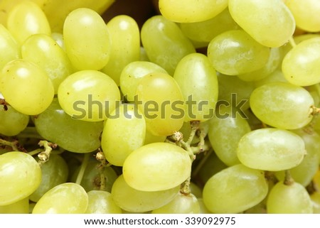 White wine grapes/Green grapes #339092975