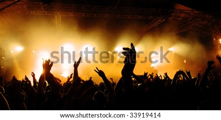 cheering crowd at concert #33919414