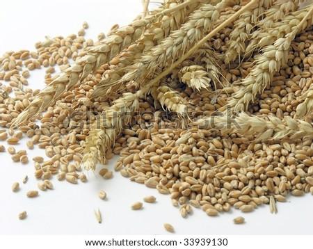 wheat ears and seeds #33939130