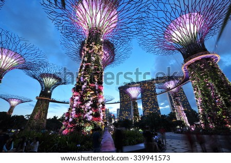 SINGAPORE - CIRCA JULY 2015: Night view of Supertree Grove at Gardens by the Bay circa July, 2015 in Singapore. Spanning 101 hectares of reclaimed land in central Singapore, adjacent to the Marina  #339941573