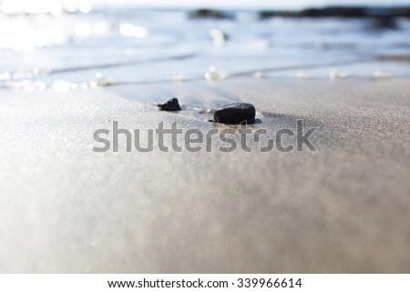 rock on the sand beach  #339966614