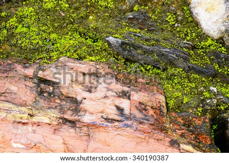 Abstract pattern of Colorful granite stone:Close up select focus with shallow  depth of field:ideal use for background. #340190387