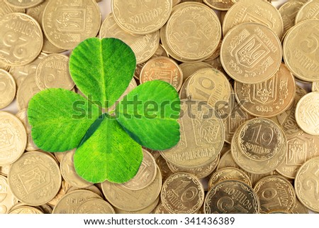 Clover leaf and euro coins, close-up #341436389