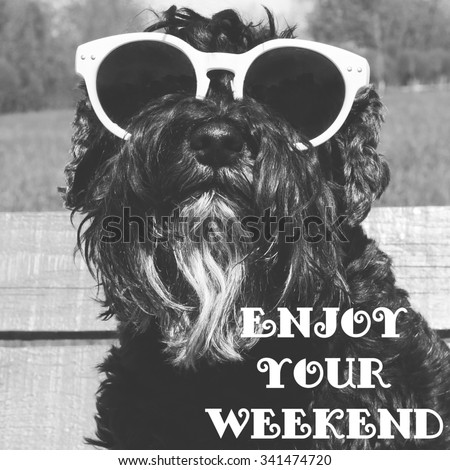 Dog in sunglasses with text: Enjoy your weekend #341474720