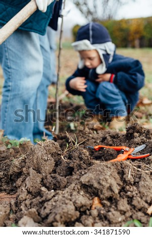 Shears for cutting branches on the ground in front of grandfather and grandson #341871590