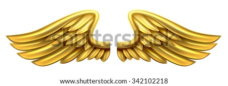 A pair of gold golden shiny metal wings design