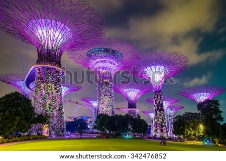 Supertree garden at night, Garden by the Bay, Singapore #342476852