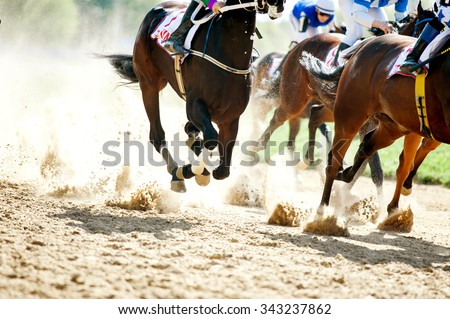 horse racing details of galloping horses legs on hippodrome track Royalty-Free Stock Photo #343237862