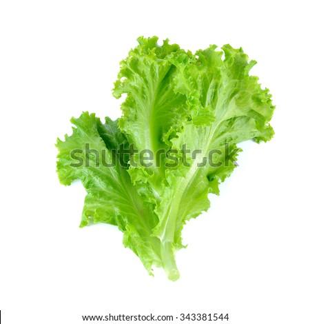 Salad leaf. Lettuce isolated on white background. #343381544