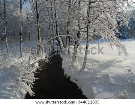 Snowy mountain stream #344011805
