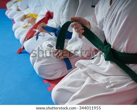 karate kids martial arts training Royalty-Free Stock Photo #344011955