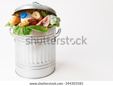 Fresh Food In Garbage Can To Illustrate Waste Royalty-Free Stock Photo #344303585