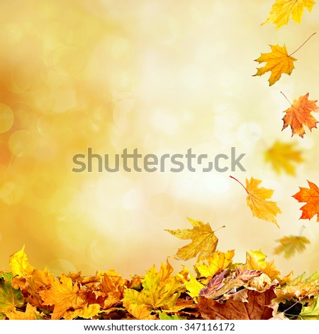 Pile of autumn leaves on nature background #347116172