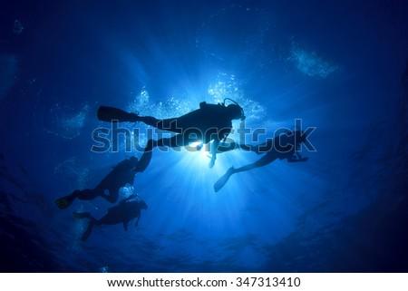 Scuba diving #347313410