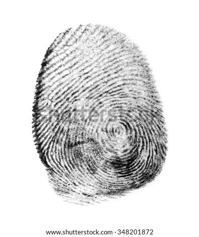 fingerprint isolated on white background #348201872
