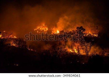 Firefighters are helping extinguish forest fires. #349834061