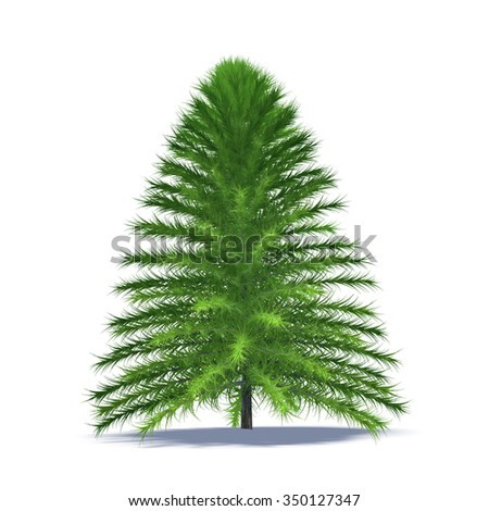 Christmas tree isolated on white background #350127347
