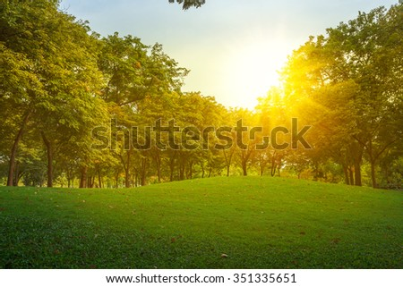 beautiful landscape with sunset - copy space for multipurpose #351335651