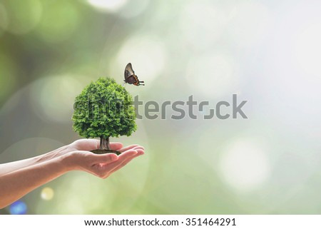 Saving green environment, harmony living in nature and ecosystem conservation campaign concept #351464291