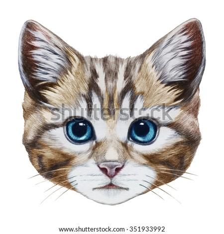 Portrait of Cat. Hand-drawn illustration, digitally colored.