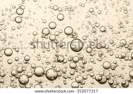 Many small champagne bubbles in a glass of champagne