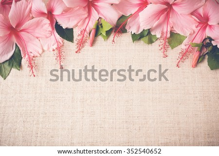 Pink Hibiscus flowers on linen, Women's Day, mother's day, weddingbackground