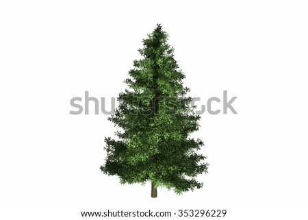 Hi Resolution Isolate Spruce Tree Background Texture.  #353296229