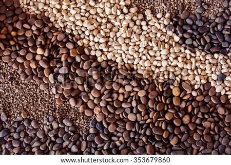 Variety of gravel decorated on ground in garden #353679860