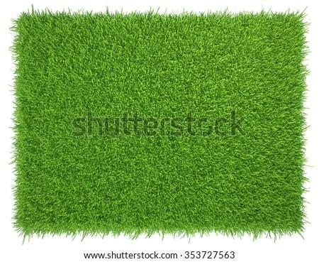 Green grass. natural background texture. fresh spring green grass. #353727563