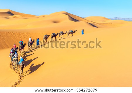 Camel caravan going through the sand dunes in the Sahara Desert, Morocco. Royalty-Free Stock Photo #354272879