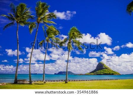 Chinaman's Hat on Oahu Royalty-Free Stock Photo #354961886