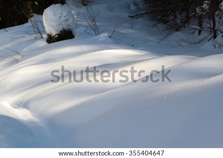 Snowbank in mountain forest #355404647