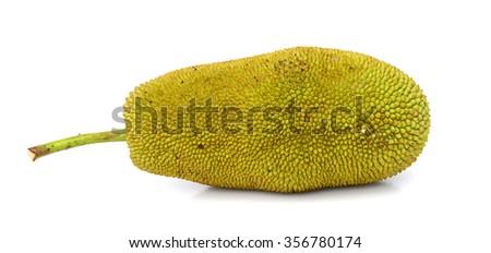Jackfruit seed texture #356780174