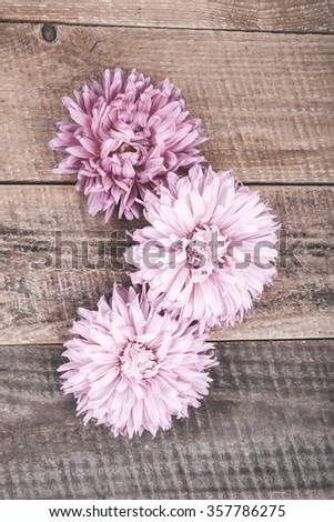pink asters on a wooden background #357786275