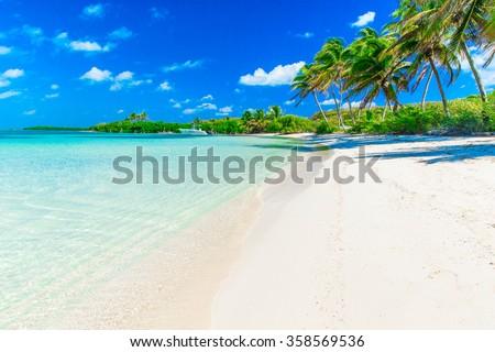 beautiful beach and tropical sea #358569536