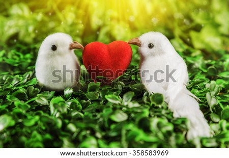 The concept of Valentine's Day. Two little white bird the lovers, heart on the background of nature.