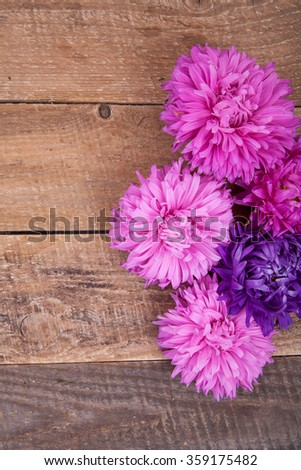 aster on a wooden background #359175482