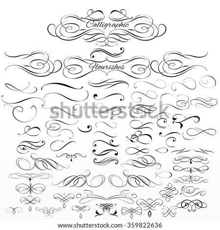Collection or set of vintage styled calligraphic  flourishes