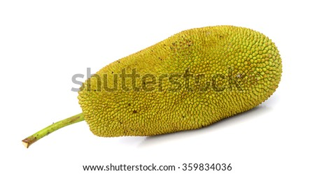 Cempedak fruit isolated on white background. a fruit native to South East Asia region. #359834036