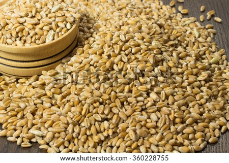 The grains of wheat in a box on the table closeup #360228755