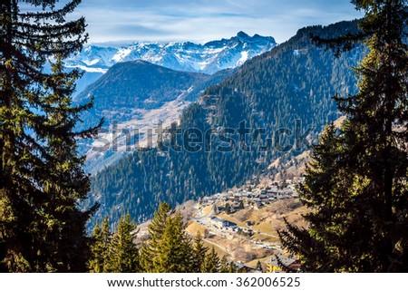 View on Switzerland village in opening between fir-trees #362006525