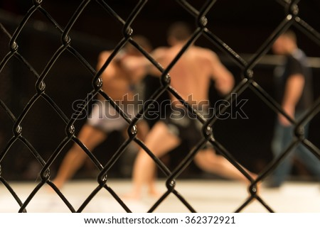 fight Royalty-Free Stock Photo #362372921