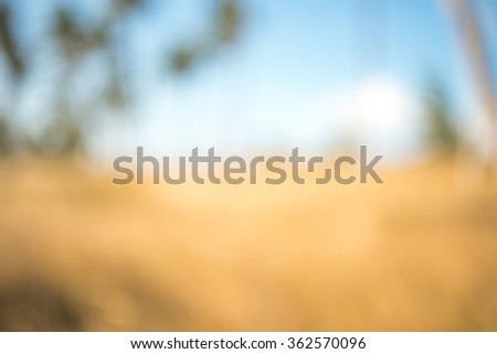 Blurred view on the beach in the summer #362570096