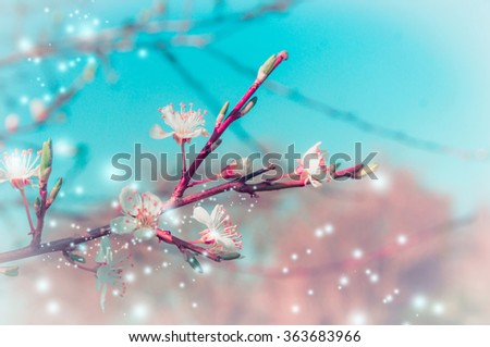 Spring nature background with tree blossom branches in park or garden #363683966