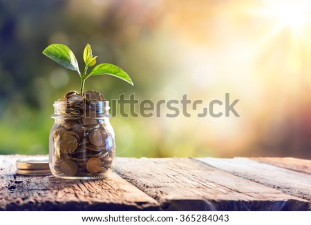 Plant Growing In Savings Coins - Investment And Interest Concept