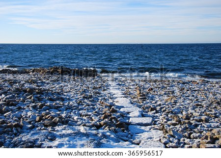 Frosty path to the beach at the flat rock coast of the swedish island Oland in the Baltic Sea. #365956517